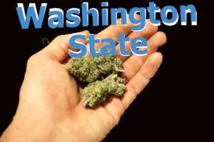 image of washington state marijuana
